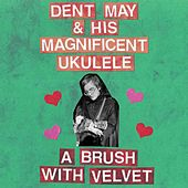 A Brush With Velvet (Demo) by Dent May