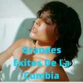 Grandes Éxitos de la Cumbia de Los reyes locos, Los Llayras, Los Humildes, los rodartes, Los Yonic's, Rayito Colombiano