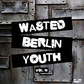 Wasted Berlin Youth, Vol. 15 by Various Artists