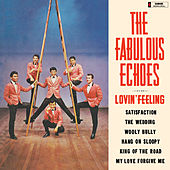 Lovin' Feeling de The Fabulous Echoes