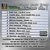 Street Scholar Music Group Presents: DigiComp Vol 1 de Various Artists