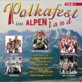 Polkafest im Alpenland, Folge 1 von Various Artists