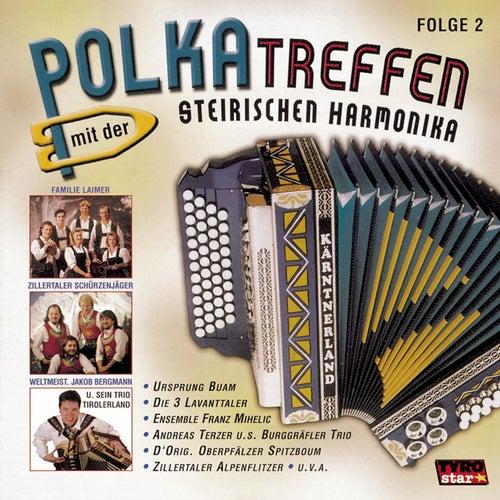 Polkatreffen mit der steirischen Harmonika - Folge 2 by Various Artists
