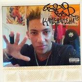 KAMEHAMEHA - EP de Farid Bang