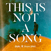 THIS IS NOT A SONG, 1929 von The Junk