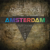 Amsterdam Night Grooves, Vol. 4 by Various Artists