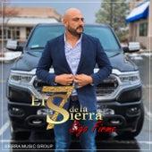 Sigo Firme de El 7 de La Sierra