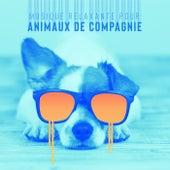 Musique relaxante pour animaux de compagnie (Chats et chiens meilleure musique de fond) de Multi Interprètes
