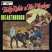 Breakthrough di Teddy Robin