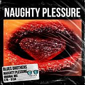 Naughty Plessure by Blues Brothers