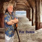 On the Way Again de Flip Damon
