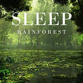 Sleep Rainforest by White Noise Research (1)
