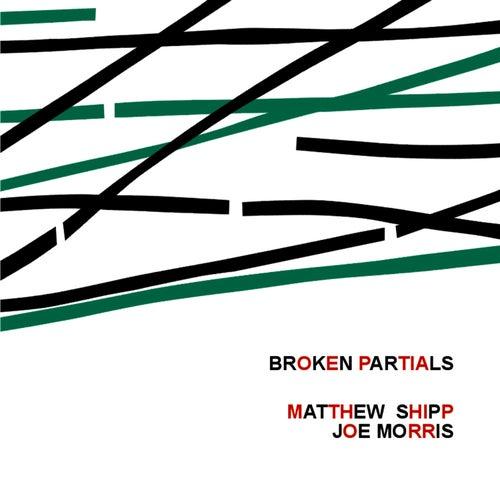 Broken Partials by Matthew Shipp