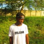 burning fire de Falcons