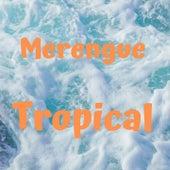 Merengue Tropical de Eddy Herrera, Elvis Crespo, Kinito Méndez, Rubby Perez, Toño Rosario