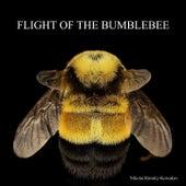 The Flight of the Bumblebee de Nikolai Rimsky-Korsakov