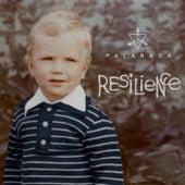 Resilience by Palaraga