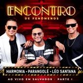 Encontro De Fenômenos (Ao Vivo / Part. I) de Harmonia Do Samba