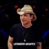 Amor Bandido de Leonardo Arantes