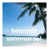 Sommar sommar sol - Sommartider by Various Artists
