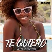 Te Quiero (Dj Global Byte Mix) by Axel Gaultier