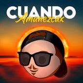 Cuando Amanezcax (Remix) by Fer Palacio