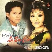 Ngau Hung Ly Qua Cau de Various Artists