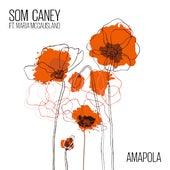 Amapola van Som Caney