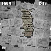 C-19 von Faun