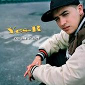 Mijn Pad van Yes-R