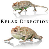 Relax Direction by Frenmad