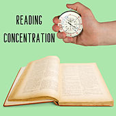 Reading Concentration by Frenmad