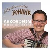Akkordeon Akkordeon von Akkordeonspieler DOMINIK