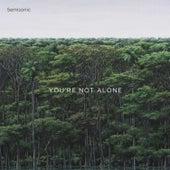 You're Not Alone von Semisonic