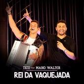 Rei da Vaquejada (Ao Vivo) von Tico