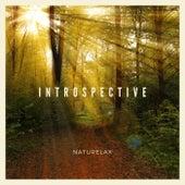 Introspective de Naturelax