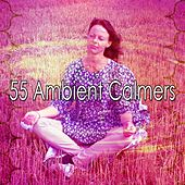 55 Ambient Calmers by Classical Study Music (1)