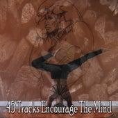 45 Tracks Encourage the Mind de massage