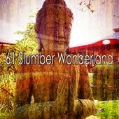 61 Slumber Wonderland by Classical Study Music (1)