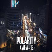 X AE A-12 by Polarity