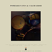In Your Face Thieves/Chestnut Attic by Pomegranates