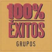 100% Éxitos - Grupos de Various Artists