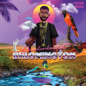 Bhlomington by Okmalumkoolkat