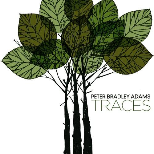 Traces by Peter Bradley Adams