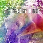 45 Harmony in Bed de Sleepicious