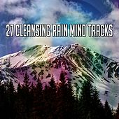 27 Cleansing Rain Mind Tracks by Rain Sounds and White Noise