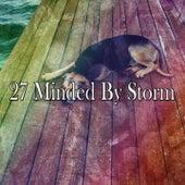 27 Minded by Storm van Rain Sounds (2)