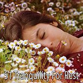 51 Tranquility for Rest by Deep Sleep Music Academy