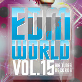 EDM World, Vol. 15 by Various Artists