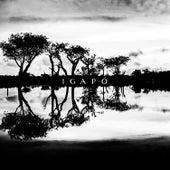 Igapó by Andre Fernandes